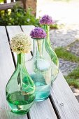 Alliums in three glass bottles on rustic wooden benches