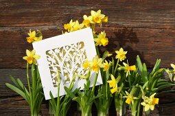 Frühlingshafte Karte mit ausgeschnittenem Blumenmotiv