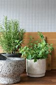Herbs in stone pots and pestle and mortar in front of wooden chopping boards