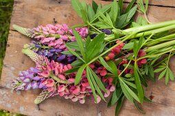 Lupins on old wooden board