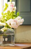 Sun shining through window onto roses in glass bottle