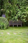Garden bench in front of lattice fence under tree in garden