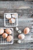 Weiße Metallkörbe mit Hühnereiern und Wachteleiern