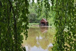 View of lake and boathouse through weeping willow branches