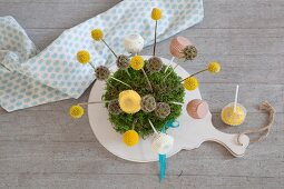 Craspedia, scabious and cake pops in ball of moss