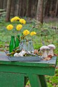 Yellow flowers in glass bottles on metal tray in woods