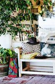 Potted ficus tree and cushions on garden bench in front of shop window