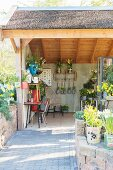 Various potted plants in summer house with three open sides
