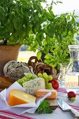 Carafe of water, bread basket, cheese and grapes on set table outdoors