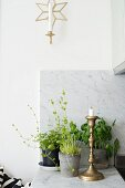 Candlestick and potted herbs on marble counter