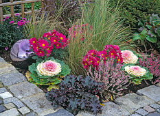 Changing bedding plants through the year