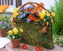 Moss bag with spring flowers