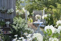Terrace with white plants at the tool shed