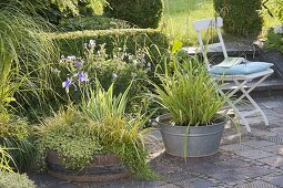 Wooden barrel and zinc tub as mini-ponds on the terrace