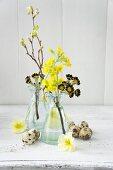 Spring arrangement of sprigs of different primulas and quail eggs