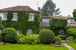 Traditional climber-covered country house in well-tended garden