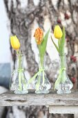 Tulips in three glass vases on wooden surface