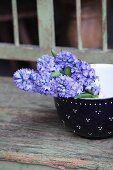 Bunch of blue hyacinths in rustic china bowl