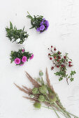 Asters, rose hips, poppy seedheads, grasses and thistles on white surface