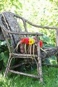 Korb mit bunten Zinnien und bedruckte Decke auf verwittertem Korbsessel im Garten
