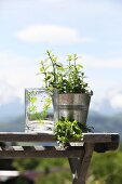 Glass painted with plant motifs next to potted herbs on vintage bench