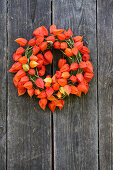Wreath of moss and physalis on weathered wooden wall