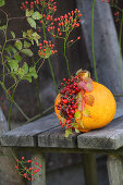 Arrangement of rose hips and pumpkin on weathered wooden bench