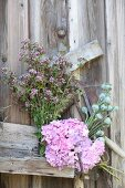 Flowers propped up against board wall to dry