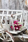 Bouquet of stocks and sea lavender in pull-along cart