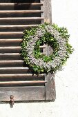 Wreath of sea lavender and box hung from shutter