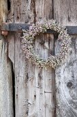 Wreath of sea lavender hung on weathered wooden door