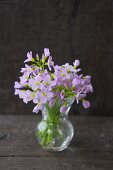 Posy of lady's smock in glass vase