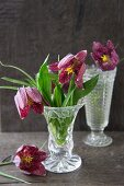 Snake's head fritillaries in vintage-style glass vases