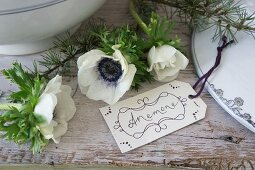 Hand-written tag next to anemones and larch twigs