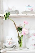 Anemones and ranunculus amongst vintage crockery on shelves