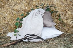 Embroidered blanket and two cushions amongst straw