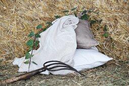 Eine bestickte Decke und zwei Kissen im Stroh