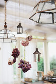 Grapes and hydrangea flowers hung between lamps