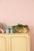 Houseplant and tins on top of pastel yellow cabinet on pink wallpaper