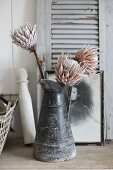 Dried protea flowers in old metal jug in front of shutter