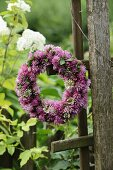 Wreath of clover flowers on weathered wooden trellis in garden