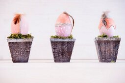 Three Easter eggs decorated with feathers bedded in moss in plant pots
