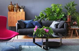 Grey couch, blue scatter cushions and hot pink armchair amonst various houseplants in living area