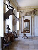 Grand interior of castle decorated with African hunting trophies