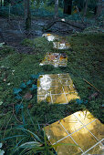 Path of golden tiled panels on mossy woodland floor