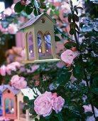 Vogelhäuschen als Teelichthalter zwischen blühenden Rosensträuchern
