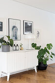 Gallery of pictures above white retro cabinet and houseplants