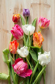 Various colourful tulips on wooden surface