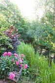Idyllischer Bachlauf mit Büschen, Bäumen und einem Korb blühender Pfingstrosen am Ufer