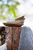 Stacked paper plates and glasses on tree stump for picnic